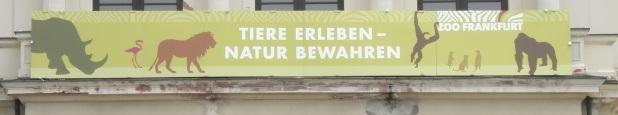 Motto Zoo Frankfurt