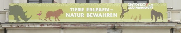 Motto Zoo Frankfurt