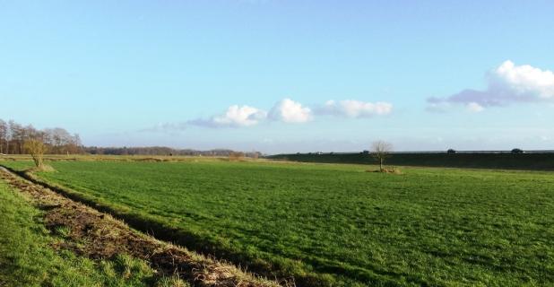 Hinter dem Deich bei Bornhorst