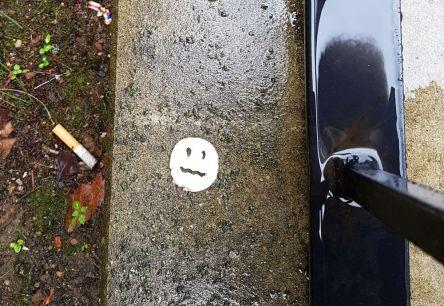 Chip im Regen
