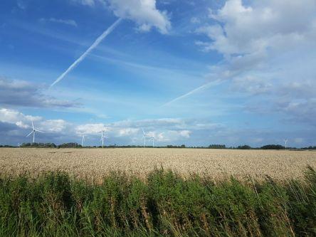 Norddeutschland, Felder mit Windrädern