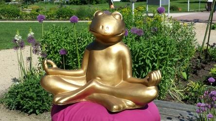 Frosch, Yoga