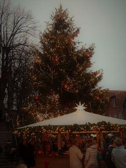 Weihnachtsmarkt Mölln