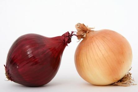 rote und braune Zwiebel