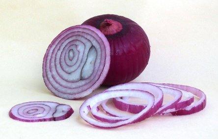 rote Zwiebel, aufgeschnitten
